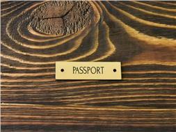 Шильдик пластиковый Passport 3