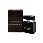 Angel Schlesser Туалетная вода Angel Schlesser Essential for men 100 ml (м)