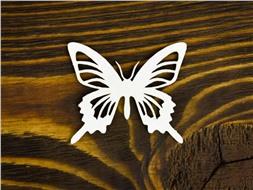 Бабочка 14