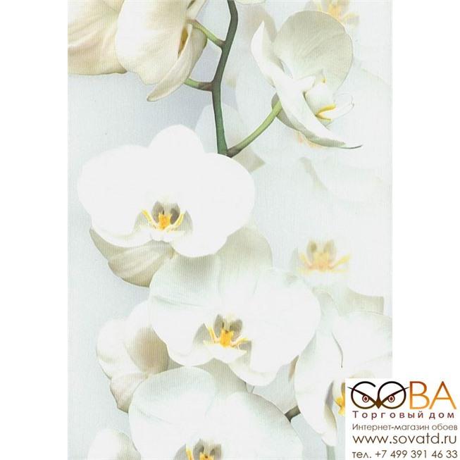 Обои Andrea Rossi Pianosa 54169-1 купить по лучшей цене в интернет магазине стильных обоев Сова ТД. Доставка по Москве, МО и всей России